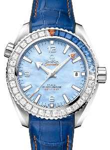 Omega Planet Ocean 600 M Co-Axial Master Chronometer 215.58.44.21.07.001 - Worldwide Watch Prices Comparison & Watch Search Engine
