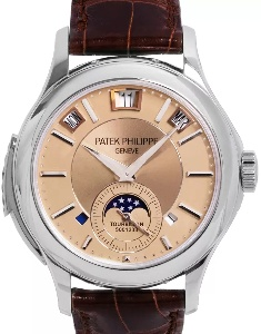 Patek Philippe Grand Complications 5207P-001 - Worldwide Watch Prices Comparison & Watch Search Engine